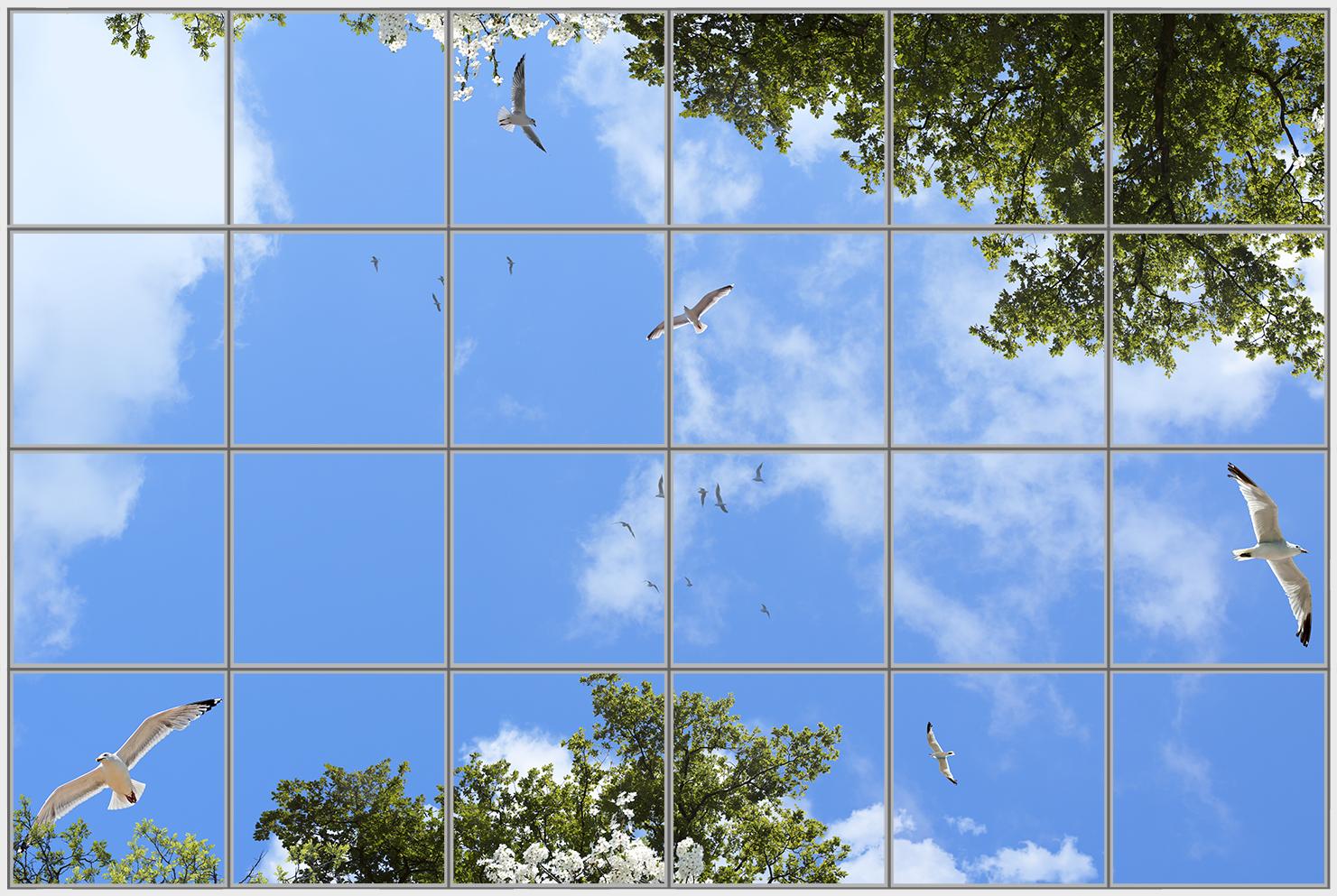 Birds Trees 24