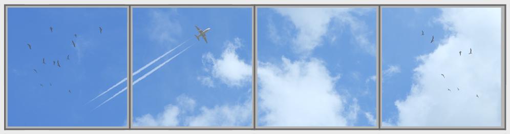Cumulus Plane Birds Panorama 4