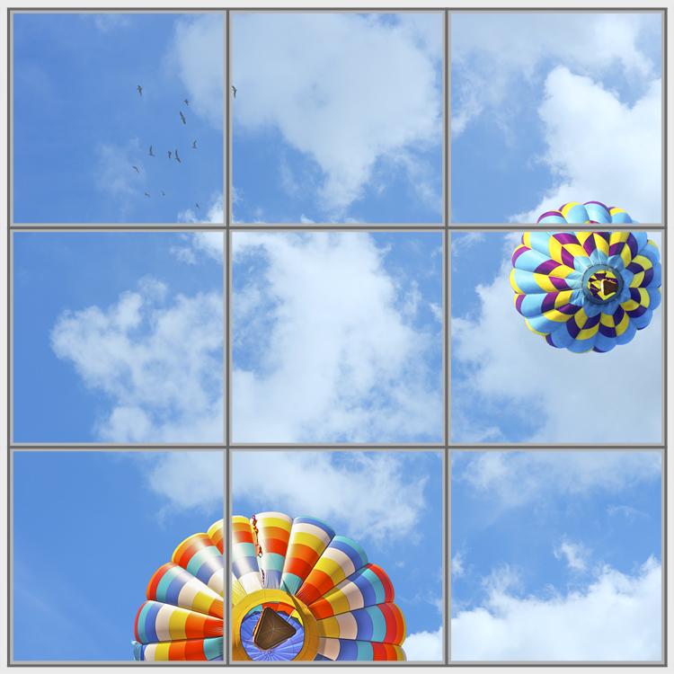 Balloon Birds 9