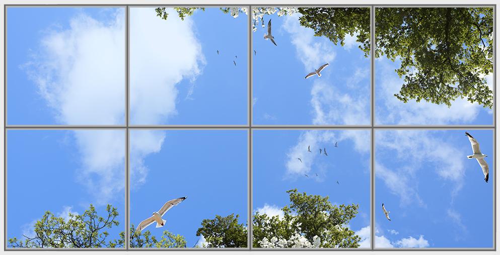 Birds Trees 8