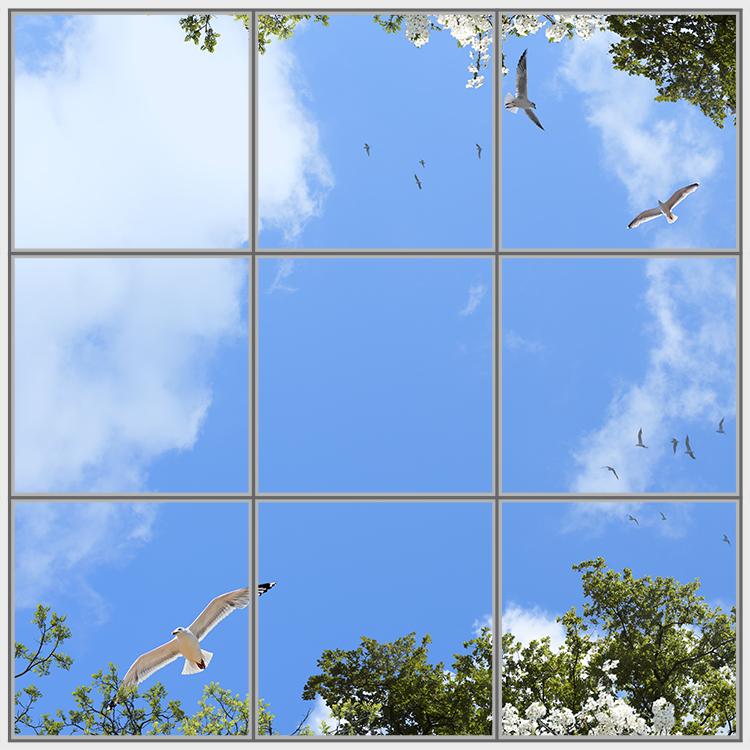 Birds Trees 9