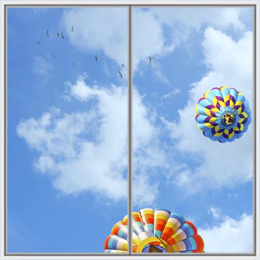 Balloon Birds Wide 2